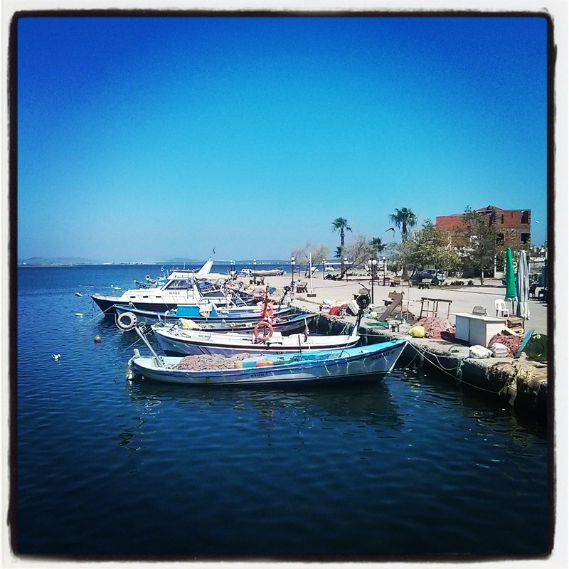 Altınova Sahil