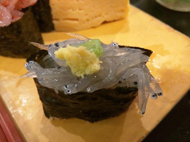 sardalya balığı yavrusu sushi